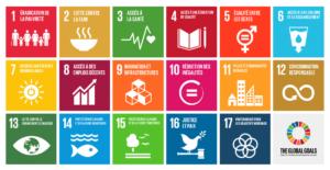 conseil et formation en développement durable